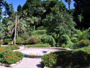 Обзорная экскурсия по Батуми иБотанический Сад